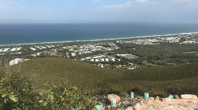 Mt Coolum, VK4/SE-114, 1st December 2019
